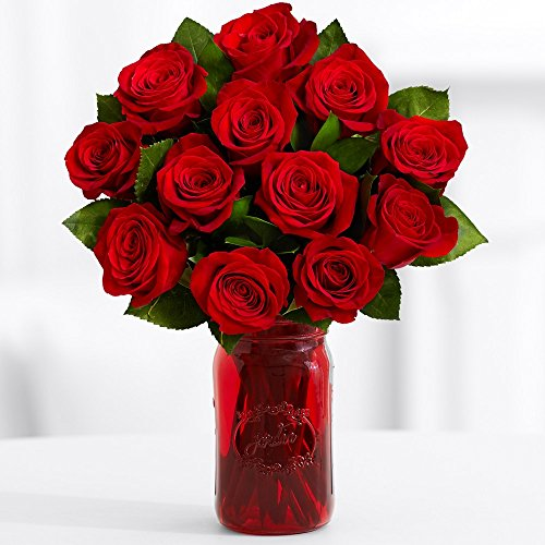 Proflowers   12 Count Red One Dozen Red Roses W Free Vase   Flowers