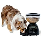 Petmate LeBistro 10-pound Portion Control Feeder with Removable Bowl