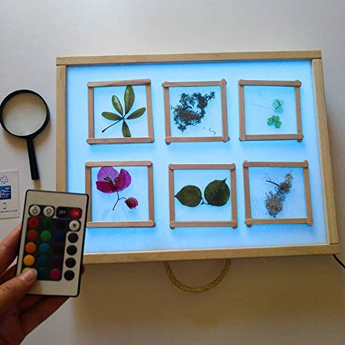 R-Crea - Mesa de luz Montessori RGB 64x48x7 Color Natural ...