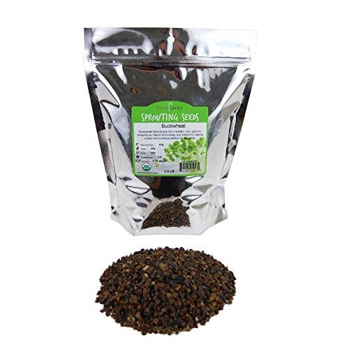 Handy Pantry Bulk Organic Buckwheat Sprouting Seed - 2 Lb...