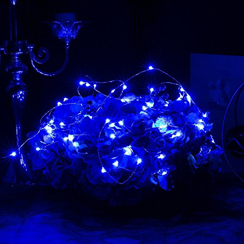ER CHEN Color Changing LED String Lights Plug in with Remote, 39.5ft 100 LED Copper Wire Dimmable Fairy Lights 8 Modes Decorative Lights with Timer for Bedroom, Patio, Garden, Yard-Warm White&Blue by ErChen (Image #6)