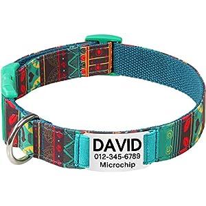 Collar de perro Personalizado,Placa de acero inoxidable,Grabado con nombre y número de teléfono,Cyan Mayan Medio