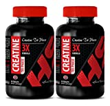 Cheap Creatine monohydrate pills – CREATINE TRI-PHASE 5000MG – promote exercise capacity (2 Bottles)