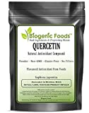 Quercetin - Natural Antioxidant Compound Powder (Saphora Japonica), 1 kg