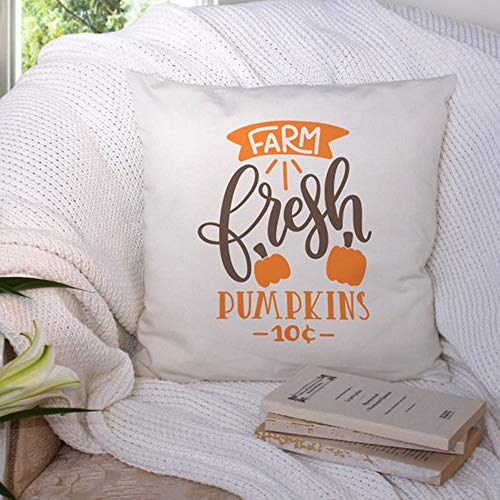 High quality Fall Decorative Pillow cover- Farm Fresh Pumpkins Throw Pillow cover - Christmas gift