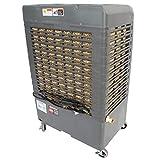 OEM TOOLS 23976 3-Speed Evaporative Cooler Area