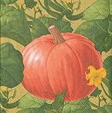 Fall Decor Thanksgiving Napkins Autumn Wedding Ideas Pumpkin Patch Paper Cocktail Napkins Pk 40