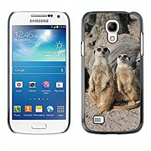Super Stella Slim PC Hard Case Cover Skin Armor Shell Protection // M00149653 Meerkat Zoo Sweet Cute Animals // Samsung Galaxy S4 Mini i9190