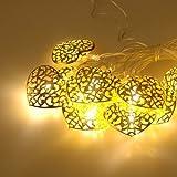 Sino Banyan Battery Fairy Lights 20 LED Golden Heart-Shape
