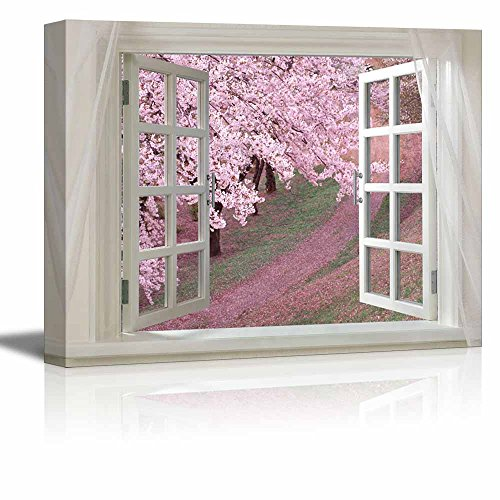 Glimpse into Cherry Blossom in Spring out of Open Window Stretched ing