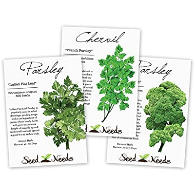 Parsley Seed Trio, (3 Individual Seed Packets) Non-GMO Seeds by Seed Needs
