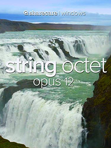 String Octet Opus 12 ()