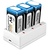 Keenstone 9V 800mAh Rechargeable Li-ion Battery with 3-Slot Charger for TENS Smoke Detector Multimeter Alarm System etc(3-Pack)