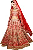 Fabtexo Women's Raw Silk & Net Lehenga Choli (S308Red_1001_Red_Free Size)