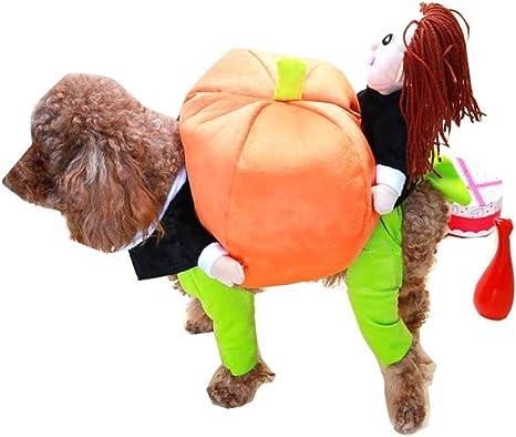 Cat Planet Disfraz de Perro de Halloween, Perro Vestido Calabaza ...