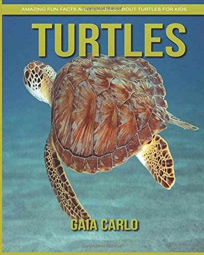 Download Turtles: Amazing Fun Facts and Pictures about Turtles for Kids PDF