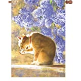 28 In. Flag – Bathing Tabby Review