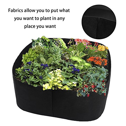 Xnferty Fabric Raised Garden Bed, 2x2 Feet Square Breathable Planting Container Grow Bag Planter Pot for Plants, Flowers, Vegetables (Black) by Xnferty (Image #2)