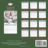 Just Gnomes calendar 2022: official Gnomes calendar