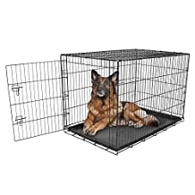 Carlson Pet Products Compact and Secure Single Door Metal Dog Crate, Extra Large