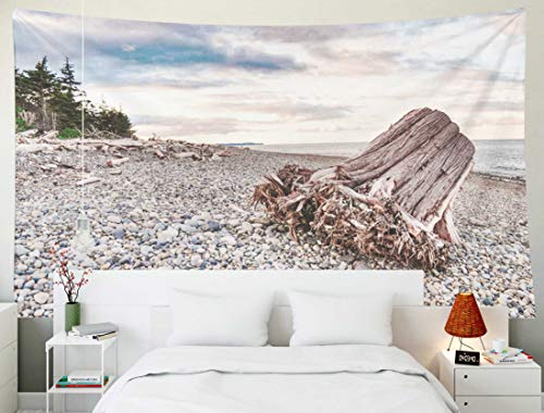 KIOAO Tapestry Wall Hanging, 80x60 Inches June Year Old Tree Trunk Washed Up Pebble Beach Sunset Some Trees in The Background Gwaii Large Map Dorm Home Bedroom Living Room Art Wall Tapestries