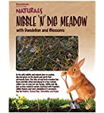 Naturals Nibble 'N' Dig Meadow con diente de león y flores para animales pequeños