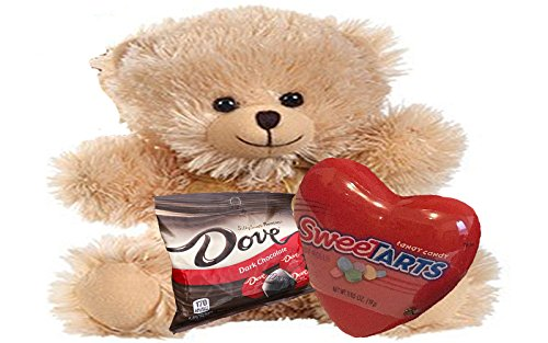 Kids Valentine Gift Set - Honey Brown Fuzzy Teddy Bear, Sweet Tarts, and Dove Dark Chocolates (8 Inch Fuzzy Bear)