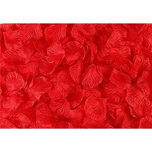 Vivianbuy 5000 PCS Artificial Silk Flower Red Rose Petals for Wedding Party Bridal Decoration 10