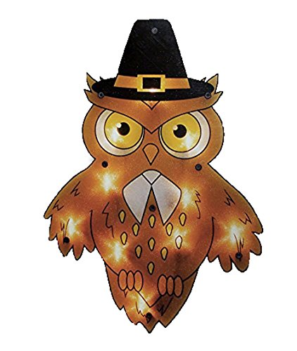 Outdoor Lighted Owl in US - 8