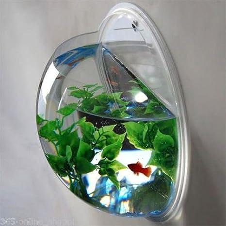 Amazon Com Panpob68 Home Decoration Pot Wall Hanging Mount Bubble Aquarium Bowl Fish Tank Home Kitchen