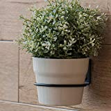 ORZ Wall Planter Hook
