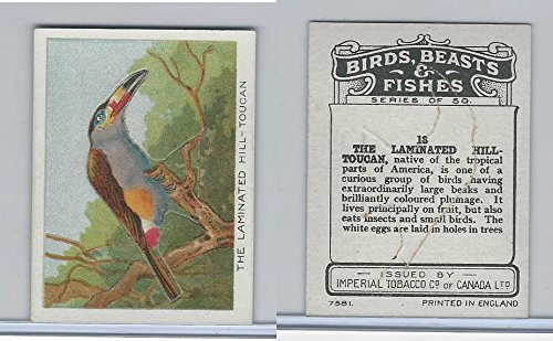 C1 Imperial Tobacco, Birds, Beasts, Fishes, 1923, 13 Laminated Toucan