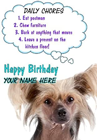 Chinese Crested Dog Birthday Rules Card Code61 Greeting Card