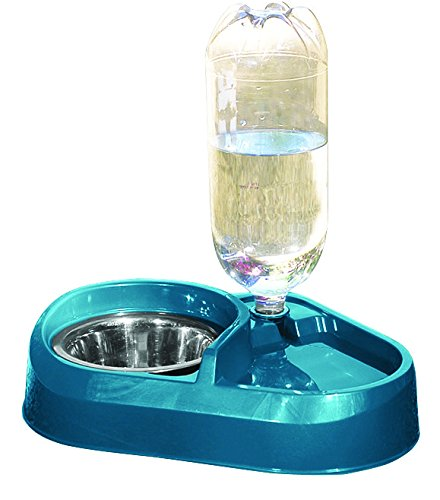 Pet Food and Water Bowl