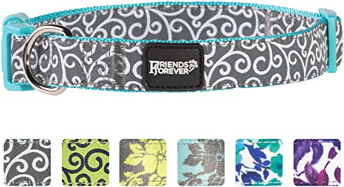 Friends Forever Dog Collar for Dogs, Fashion Floral Pattern Cute Puppy Collar, Blue Medium 14-20