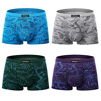 wirarpa Men's Breathable Modal Microfiber Trunk Underwear Covered Band Multipack Printed Size L