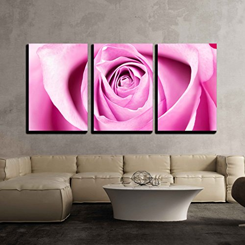 wall26 3 Piece Canvas Wall Art - Single Rose Closeup - Modern Home Decor Stretched and Framed Ready to Hang - 24