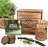 Indoor Herb Garden Starter Kit - Organic, Non GMO Herb Seeds - Basil Thyme Parsley Cilantro Seed, Potting Soil