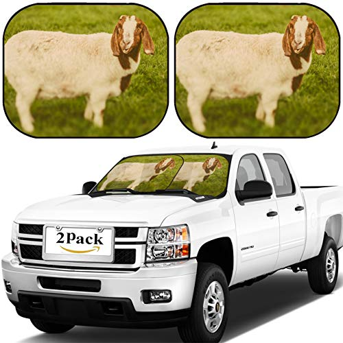 MSD Car Windshield Sun Shade, Universal Fit, 2-Piece for Car Window SunShades, Automotive Foldable Protector Cover, Image ID: 34232218 Goat on a Green Grass as Sign of 2015 Year by Chinese Calendar V