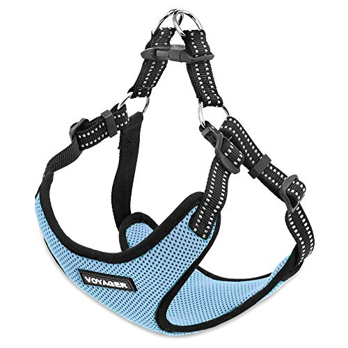 Voyager Step-In Flex Dog Harness - All Weather Mesh, Step In Adjustable Harness for Small and Medium Dogs by Best Pet Supplies - Baby Blue, X-Small