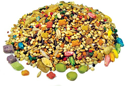 FM-Browns-Tropical-Carnival-Gourmet-Parakeet-Food-Nutritionally-Enhanced-Daily-Diet-with-Fruits-Veggies-Nuts-Seeds-and-Grains-Vitamin-Nutrient-Fortified-2lb