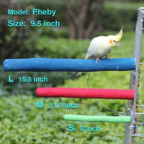 KINTOR Bird Perch Rough-surfaced Nature Wood Stand Toy Branch for Parrots Green (Small-8inch)
