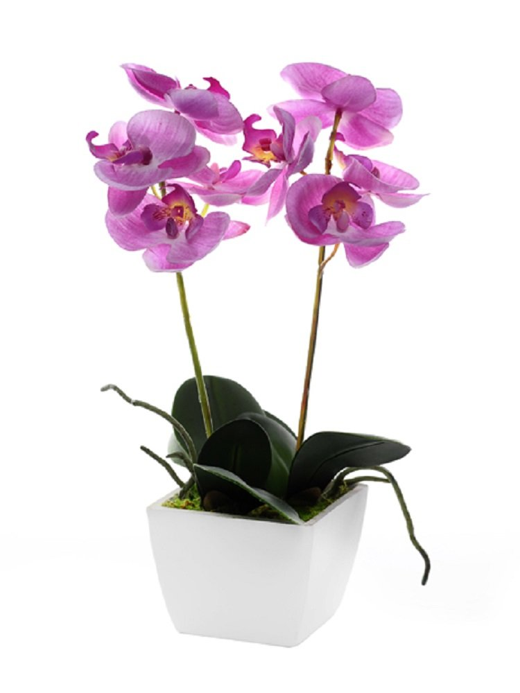 Artificial Orchid Pale Pink Silk Potted Flower Plant In White Wooden Pot  33cm Tall: Amazon.co.uk: Kitchen U0026 Home