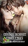 Cowboy Jackpot: Christmas, Randi Alexander, 1481038494
