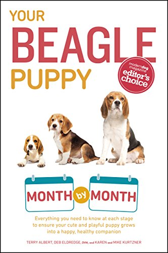 Your Beagle Puppy Month by Month: Everything You Need to Know at Each State  to Ensure Your Cute and Playful Puppy Grows into a Happy, Healthy