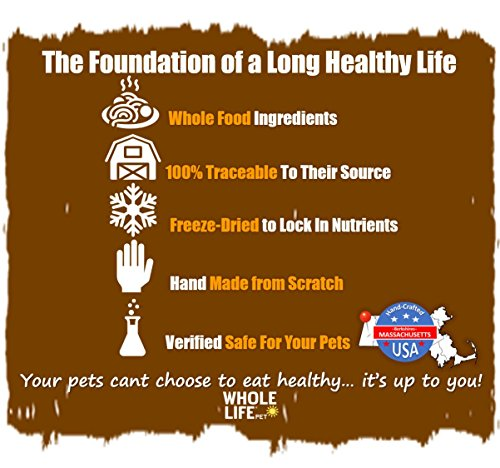 Whole Life Pet Single Ingredient USA Freeze Dried Beef Liver Treat for Dogs, 4.5-Ounce