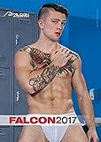 Falcon 2017
