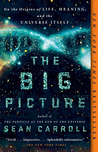 the-big-picture-on-the-origins-of-life-meaning-and-the-universe-itself