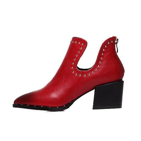 LIANGJUN Botines Zapatos De Mujer Tacones Altos Al Aire Libre Primavera, 6 Tamaños, (