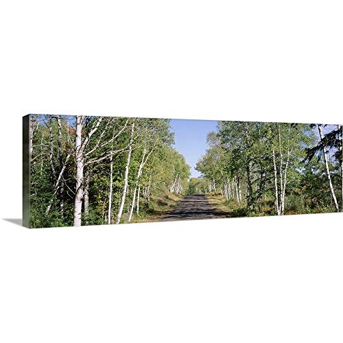 "GREATBIGCANVAS Gallery-Wrapped Canvas Entitled Trees Along a Roadside, Brockway Mountain Drive, Keweenaw Peninsula, Copper Harbor, Michigan by 48""x16"""